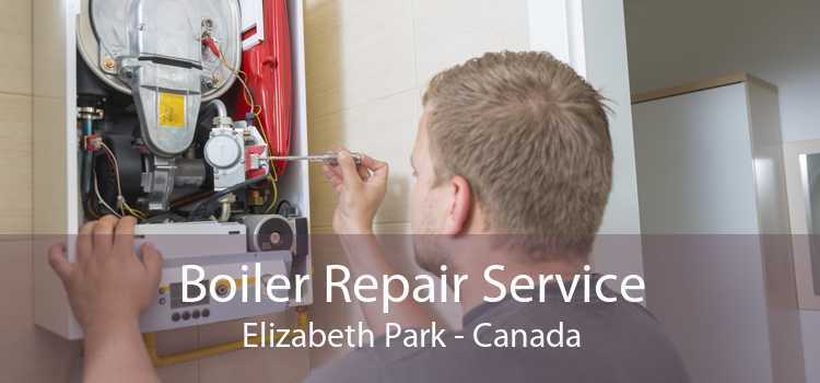 Boiler Repair Service Elizabeth Park - Canada
