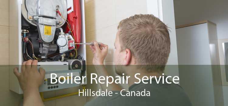 Boiler Repair Service Hillsdale - Canada