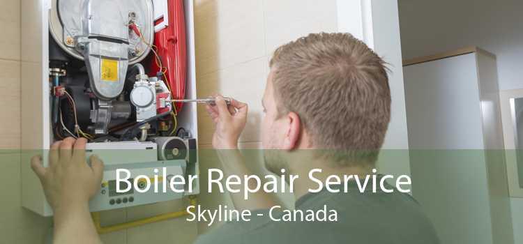 Boiler Repair Service Skyline - Canada