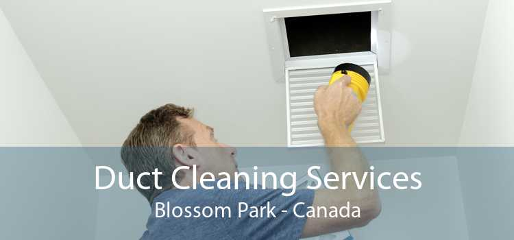 Duct Cleaning Services Blossom Park - Canada