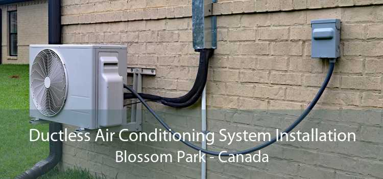 Ductless Air Conditioning System Installation Blossom Park - Canada