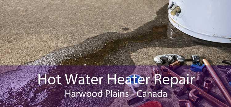 Hot Water Heater Repair Harwood Plains - Canada