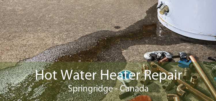 Hot Water Heater Repair Springridge - Canada