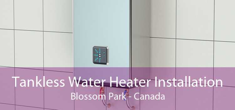 Tankless Water Heater Installation Blossom Park - Canada