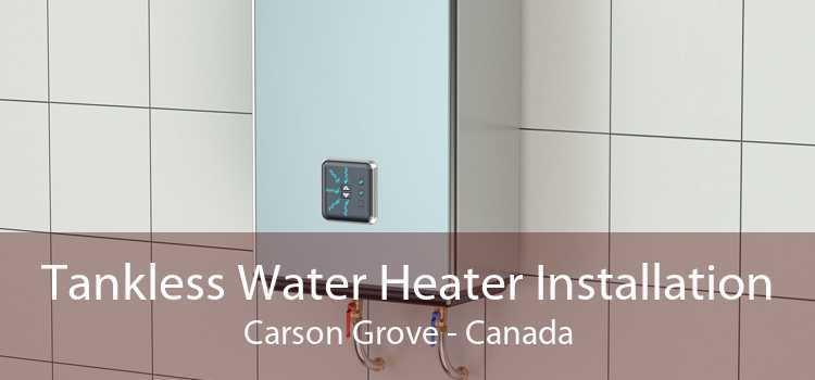 Tankless Water Heater Installation Carson Grove - Canada