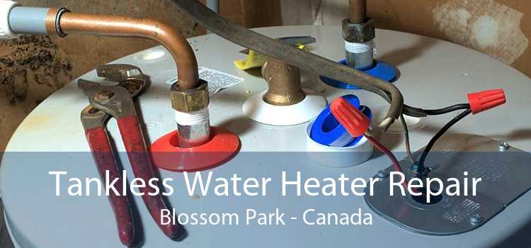 Tankless Water Heater Repair Blossom Park - Canada