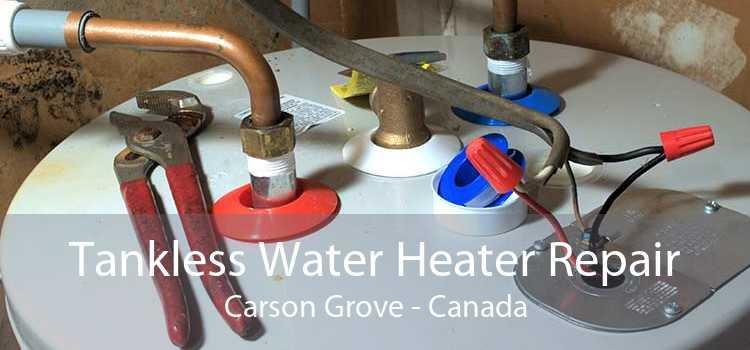 Tankless Water Heater Repair Carson Grove - Canada