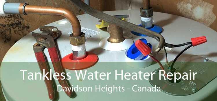 Tankless Water Heater Repair Davidson Heights - Canada